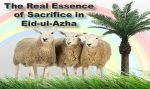 The Real Essence of Sacrifice in Eid-ul-Azha